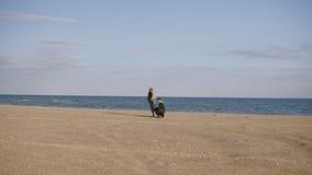 Avlägsen längd i fot räknat En ung familj promenerar stranden bredvid havet i kallt väder, fadern rymmer en drake in lager videofilmer