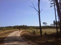 Avlägsen mountainbikecyklist på smutsbanan Royaltyfri Fotografi
