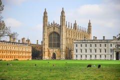 Avlägsen sikt av kapellet i högskola för konung` s i det Cambridge universitetet Arkivfoton