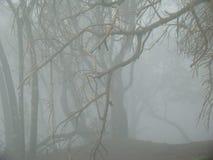 Avlägset berg som täckas i mist Royaltyfria Foton