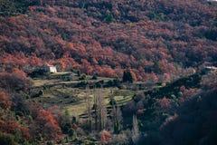 Avlägset hus i skogarna av Provence, Frankrike Royaltyfri Foto