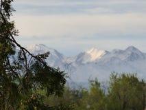 avlägsna berg Arkivfoto