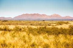 Avlägsna Bushland Arkivbild