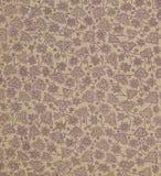 Avläs försättsbladet av en gammal bok, guling-grå färg-brunt, med den täta och invecklade blom- modellen Royaltyfria Bilder