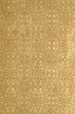 Avläs försättsbladet av en gammal bok, guling-grå färg-brunt, med den täta och invecklade blom- modellen Royaltyfri Fotografi