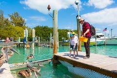 Avla och två pojkar för liten unge som matar fiskar och pelikan Arkivfoto