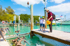 Avla och två pojkar för liten unge som matar fiskar och pelikan Royaltyfria Foton