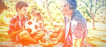 Avla samtal till sonen på picknicken parkerar in royaltyfria bilder