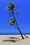 Avlägsen tropisk strand Arkivbild