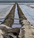 Avloppsränna i salta damm som gör rått för att salta eller trava från havsvatten I Royaltyfri Bild