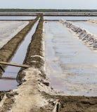 Avloppsränna i salta damm som gör rått för att salta eller trava från havsvatten I Arkivfoto