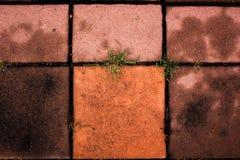 Avmaska bakgrund för tegelstengolvtextur, arkivfoton