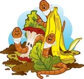 Avmaskar äta Compost (Vermicomposting) Royaltyfri Fotografi