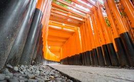 Avmaskar ögonsikt av Torii portar i den Fushimi Inari relikskrin Royaltyfria Foton