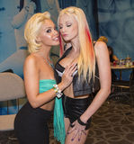AVN Adult Entertainment Expo Royalty Free Stock Images
