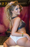 AVN Adult Entertainment Expo Stock Image