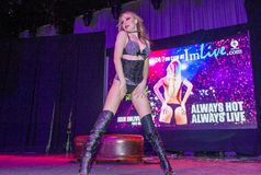 AVN Adult Entertainment Expo Royalty Free Stock Image