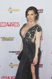 2016 AVN Awards Stock Image