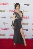2016 AVN Awards Royalty Free Stock Image