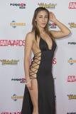 2016 AVN Awards Royalty Free Stock Photos