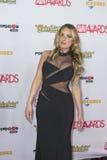 2016 AVN Awards Stock Photos