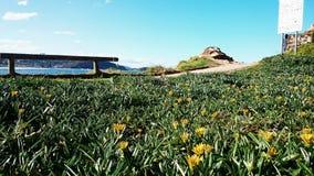 Avoca-Strand-Ansicht Stockfoto