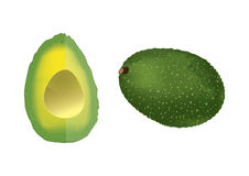 Avocado. Isolated avocado: the whole and the part Royalty Free Stock Images
