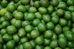 Avocado. Pile of avocado fruits/vegetable Royalty Free Stock Photography