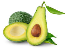 Avocado Stock Foto's