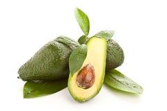 Avocado Stock Photography