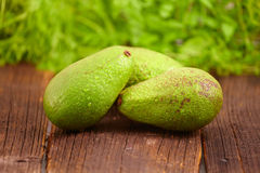 Avocado Royalty Free Stock Photos
