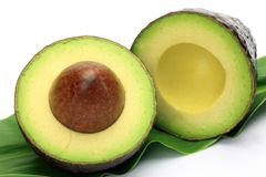 Avocado Royalty Free Stock Images