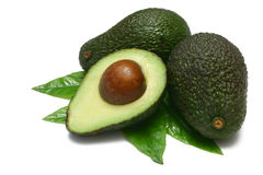 Free Avocado Royalty Free Stock Image - 2544146