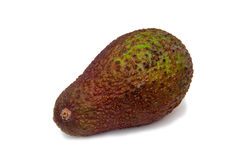 Avocado Fotografia Stock