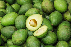 Avocado Immagine Stock
