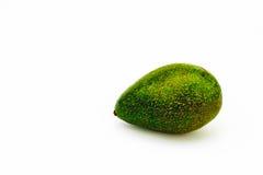 Avocado Fotografia Stock