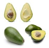 Avocado-Ansammlung Stockfotos
