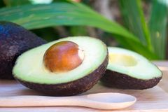 Avocado and avocado pieces on a wooden floor and has a background of green tree, Selected focus Royalty Free Stock Photo