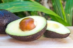 Avocado and avocado pieces on a wooden floor and has a background of green tree, Selected focus Stock Photo