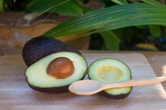 Avocado and avocado pieces on a wooden floor and has a background of green tree, Selected focus Stock Images