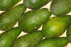 Avocado, avocado regelmatige achtergrond Macro royalty-vrije stock fotografie