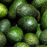 Avocado background. Fresh green avocado Royalty Free Stock Photography