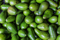 Avocado background. Fresh green avocado on a market stail. Food Stock Photos