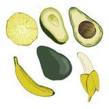 Avocado, banana, pineapple vector illustration. Food Royalty Free Stock Photos