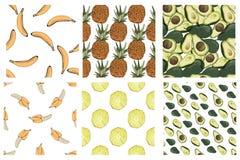 Avocado, banana, pineapple vector illustration. Food Royalty Free Stock Images