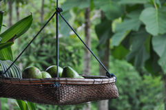 Avocado in the basket. Stock Photo