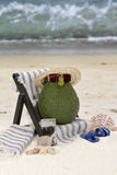 Avocado in Beach Chair. An avocado wearing sunglasses and straw hat relaxing in beach chair with point and shoot camera and flip flops in sand stock photo