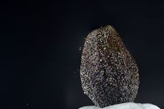 The avocado is a berry. And belongs to the laurel family royalty free stock photos