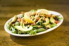 Avocado chicken salad Stock Images