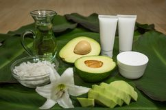 Avocado in cosmetology. Cream, oil and srab. Skin care. royalty free stock photography